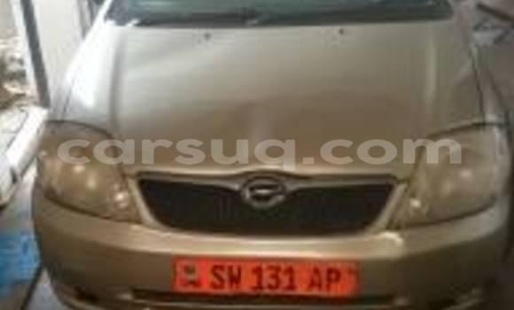 Acheter Voiture Toyota Allex Autre à N'Djamena en Tchad