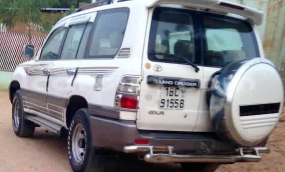 Acheter Voiture Toyota Land Cruiser Blanc à N'Djamena en Tchad