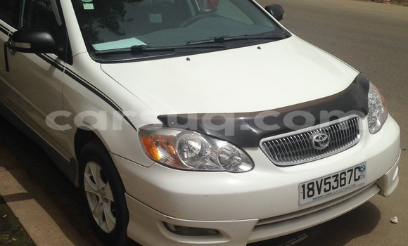 Acheter Voiture Toyota Corolla Blanc à N'Djamena en Tchad